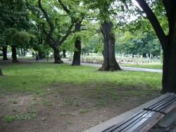 Park_Yonak_SL