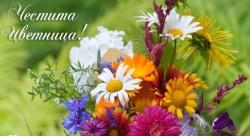 _________Cvetnica